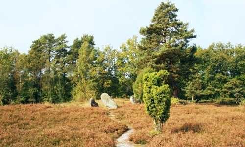 Oldendorf – Eine Stadt für die Toten?